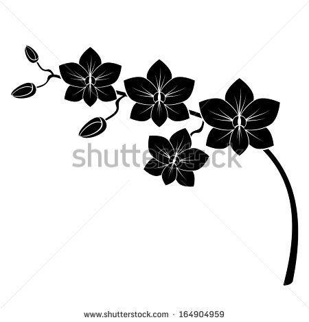 Dessin fleur noir et blanc recherche google broderie pinterest dessin fleur fleurs - Dessin d orchidee ...