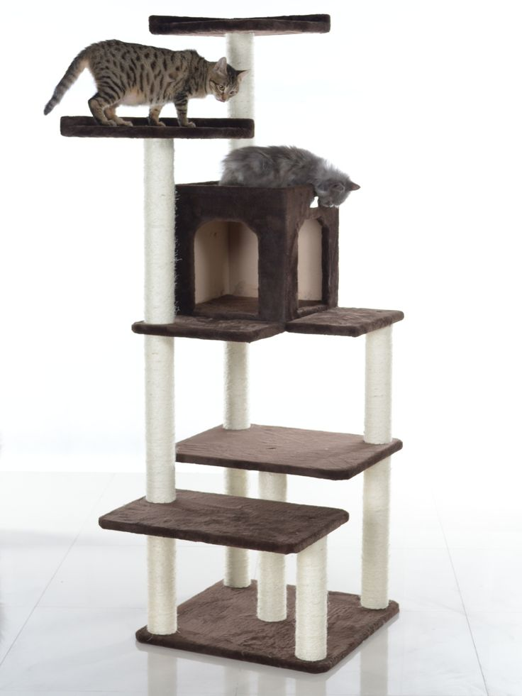 GleePet's 66 inch cat tower features a cat condo, multiple levels and 2 high cat perches. Description from pinterest.com. I searched for this on bing.com/images