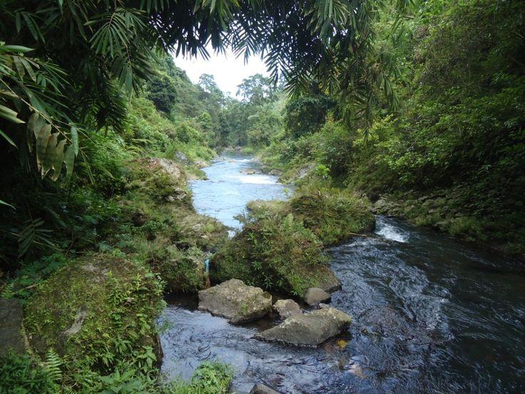 Nothing but nature on our Sambangan Nature Hike in North Bali.