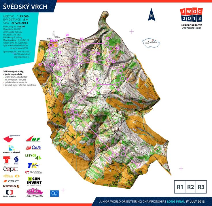 JWOC 2013 Long Men - an interesting map with shading