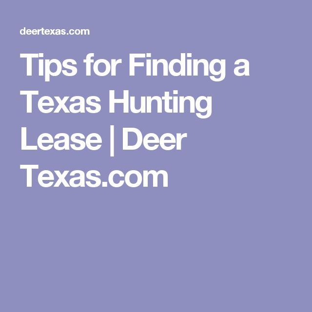 Tips for Finding a Texas Hunting Lease | Deer Texas.com