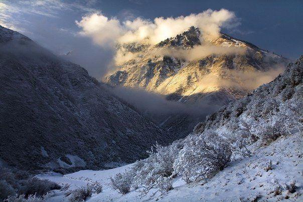 Горный хребет Заилийский Алатау, Казахста