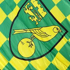 Image result for norwich city fc quilt pattern