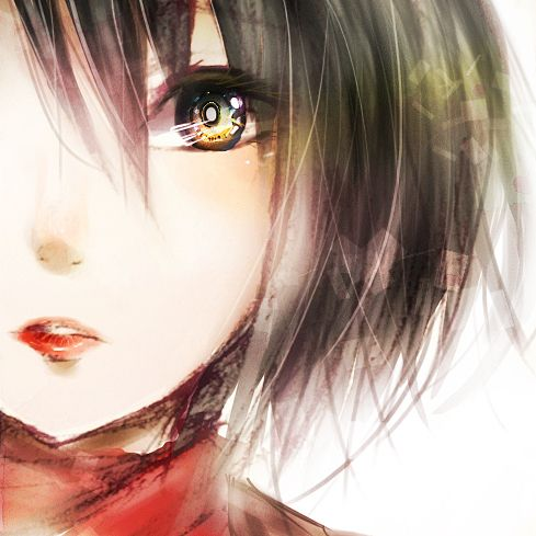 Safebooru - Anime picture search engine! - black hair hoseki karin lowres mikasa ackerman scarf shingeki no kyojin short hair | 1030160