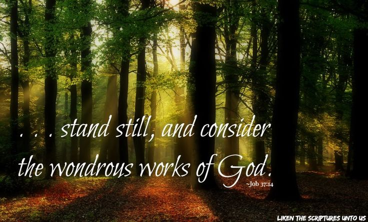 """""""Stand still, and consider the wondrous works of God"""" (Job 37:14). … Enjoy more inspiring images, scriptures, and uplifting messages from the Holy Bible http://facebook.com/212128295484505"""