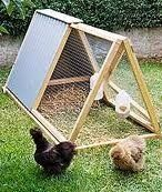 Learn how to build a cheap chicken coop, because chicken coops do not need to be expencive, it just need to be simple and practical.    What people...