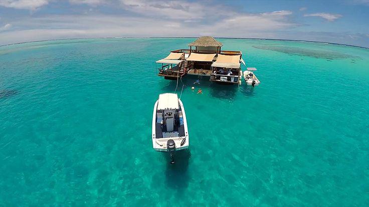 Pływający bar na rafie koralowej EXAMPLE.PL