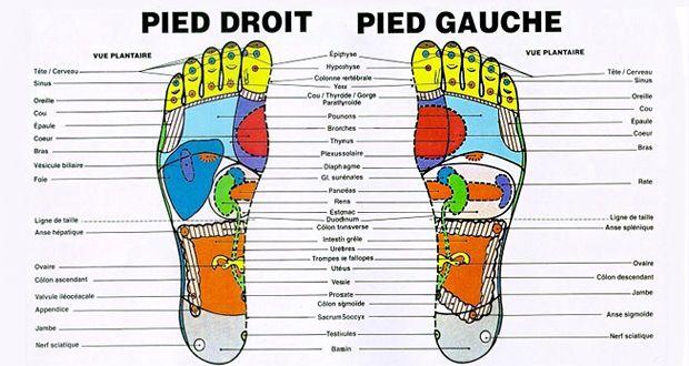 La réflexologie plantaire ou massage des pieds : 7 points de pression qui réduisent le stress et stimulent le métabolisme pour une meilleure santé.