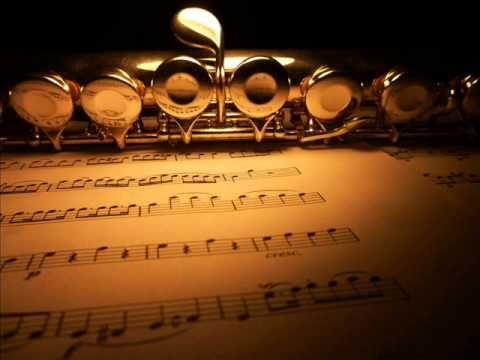 """Peter Benoit - Flute Concerto """"Symphonic Tale"""" Op. 43a (1865) (1/3)"""