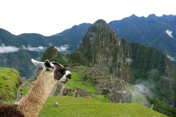 Alle Reisen, Peru, Südamerika Reisen | Rundreisen | Kleingruppenreisen | Tinta Tours Erlebnisreisen