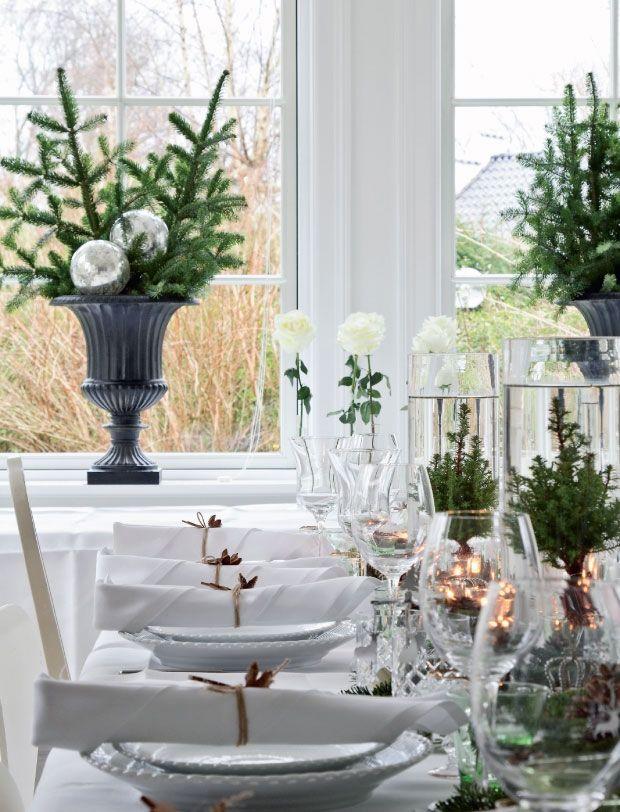 Jean har julepyntet det smukke bord med kviste af skovfyr, kogler og limefrugter.