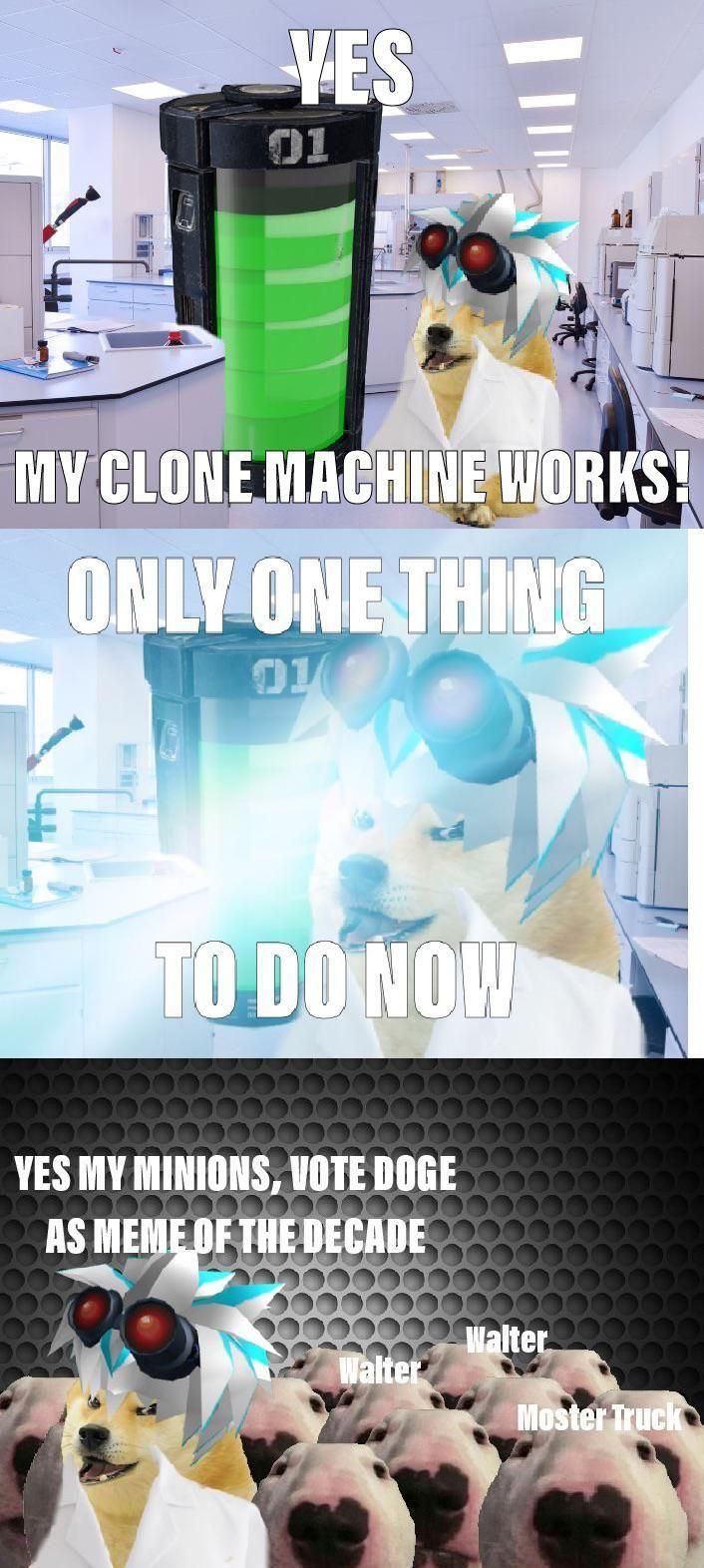 Https Poll Fm 10469711 Arrived Doge Format Has Le Meme Superior Walter Memes Polls My Minion
