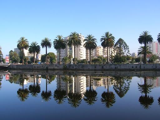 Viña del Mar, Chile - a very glamorous resort just north of Valparaiso.