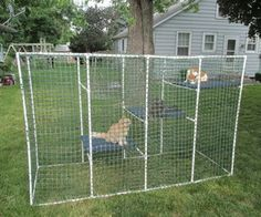 Cat Enclosure Instructable Made of PVC and plastic fencing