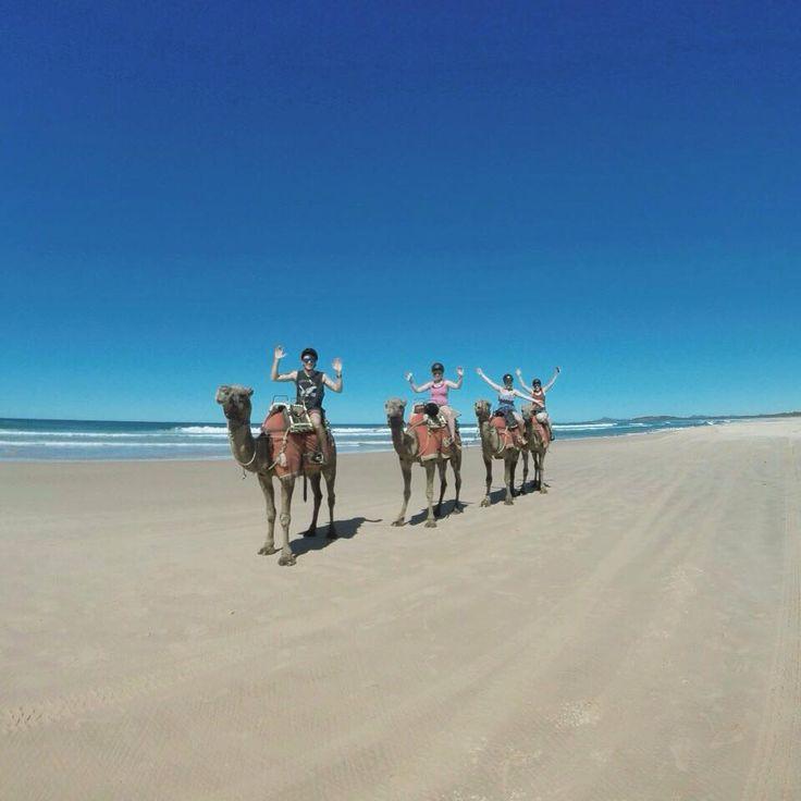 Camel rides on the beach, fun times!! Coffs Harbour, NSW, Australia. Kickstart your own adventure: http://www.backpackerdeals.com/