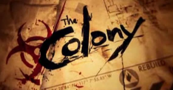 The Colony  Actually a Discovery Channel series now on DVD, and can be seen on Netflix.  I have found it to be very educational and so interesting.