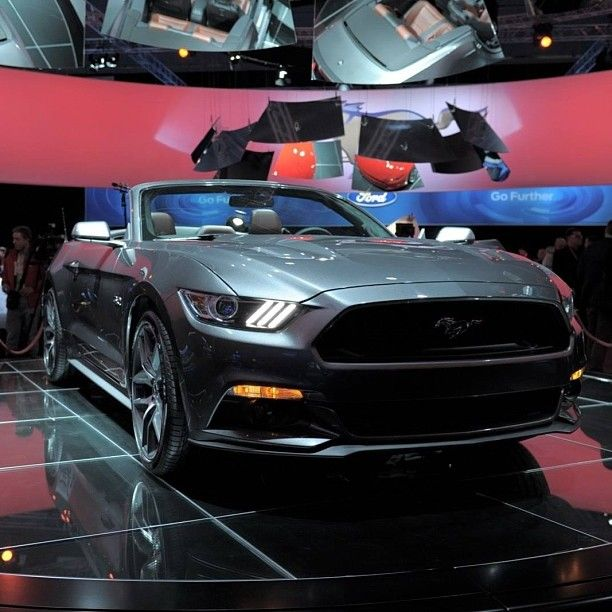2014 Ford Mustang, 2015 Ford Mustang Convertible, 2015 Ford Mustang Coupe, 2015 Ford Mustang GT, #Ford Ford Mustang Convertible, #Convertible Ford Motor Company#FordEvos  - Follow #extremegentleman for more pics like this!