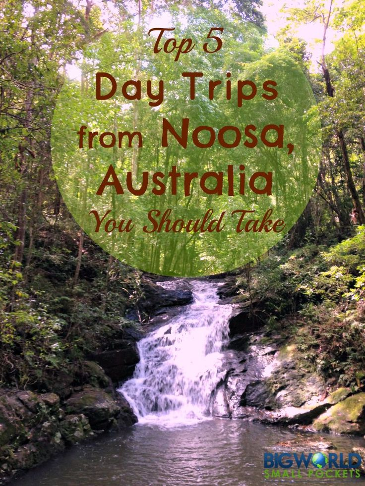 5 Great Day Trips from Noosa, Australia {Big World Small Pockets}
