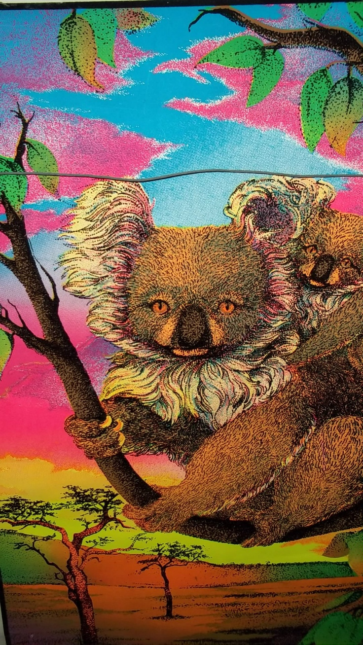 143 Best Gemma Atkinson Images On Pinterest: 143 Best Images About Australia- Someday On Pinterest