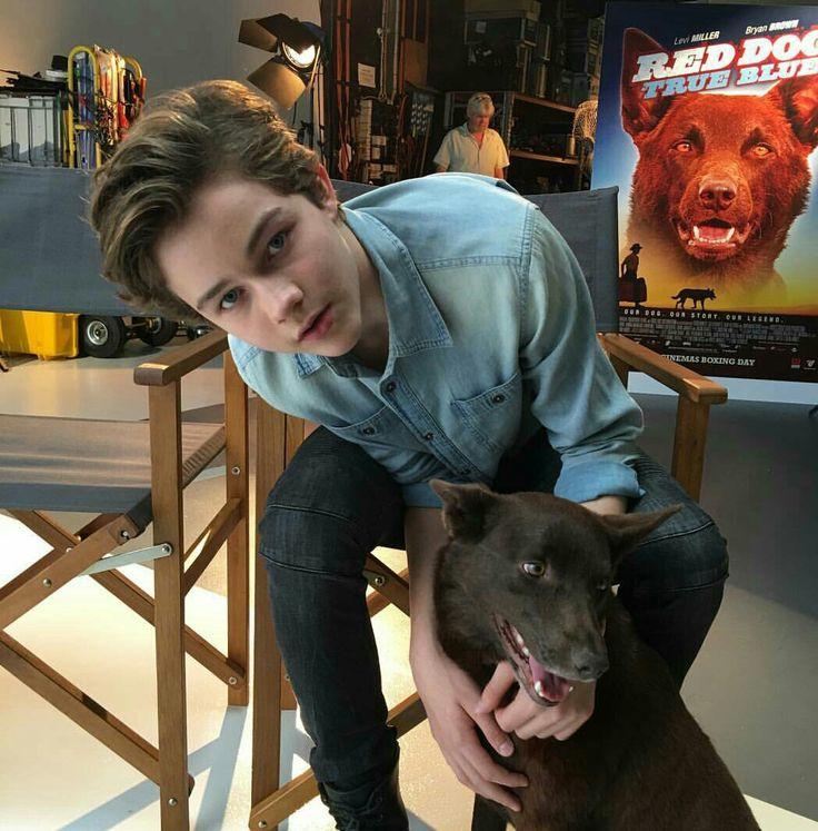 Levi Miller promotional Red Dog movie