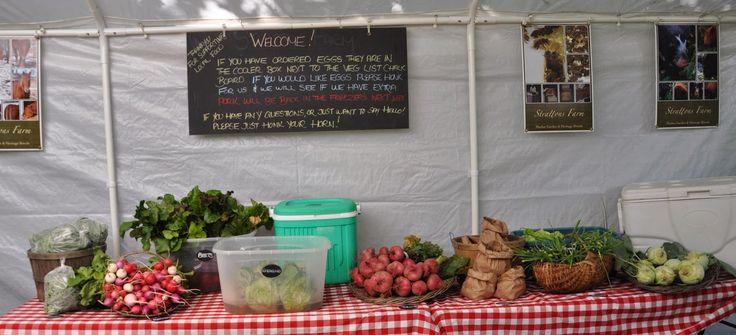 Strattons Farm: CSA Newsletter Week 3