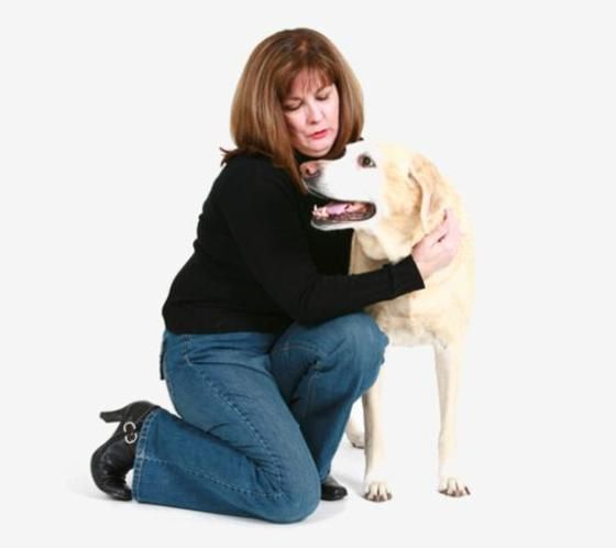 http://www.housesitters.com.au/ - We bring to you the best #house #sitting #services for your# pets where they would feel left out when you are not around.