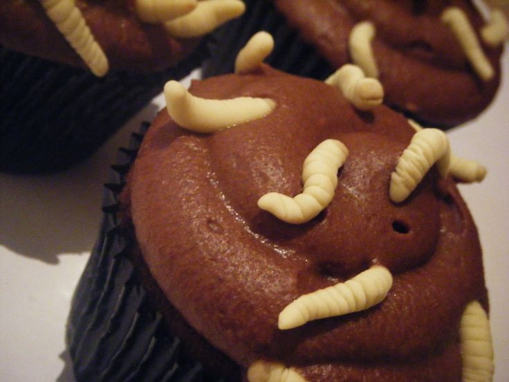 Gross and Disgusting Cakes | made these maggot infested cupcakes this morning, for a local media ...