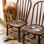 Cadeiras viram comedouros para animais