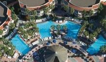 Loews San Diego Hotel | San Diego Luxury Hotel | Loews Hotels - Loews