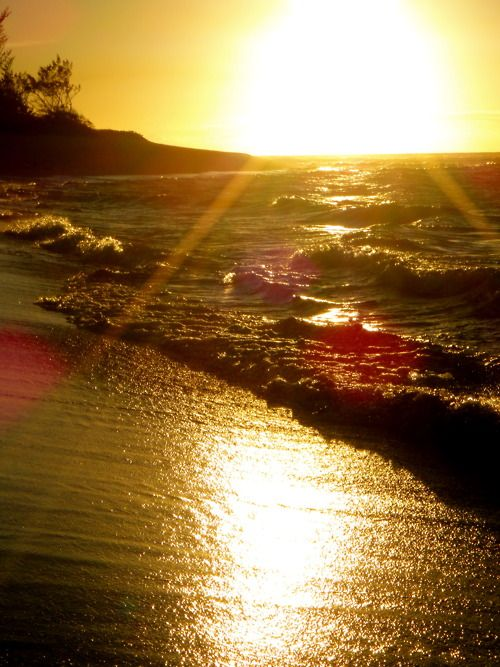 on the shore: At The Beaches, Vintage Summer, Hawaiian Sunsets, Ocean Sunsets, Cottages, Beautiful Beaches, Summer Sun, Beaches Sunsets, Amazing Sunsets