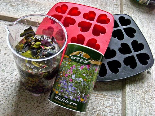 ♥♥♥☼♥♥♥ Make your own seed bombs to give your bestest friends for sharing love from your gardens ♥♥♥☼♥♥♥