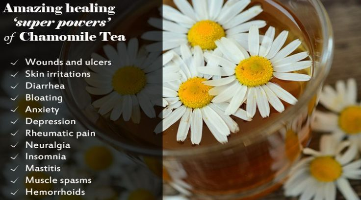 chamomile- Tea amazing healing