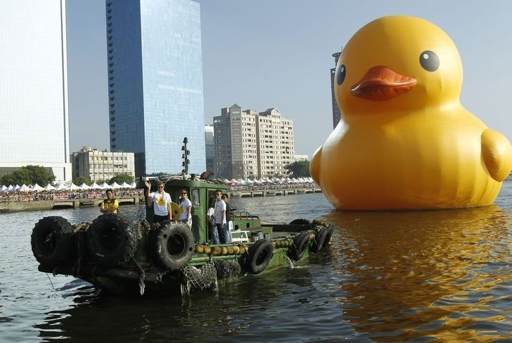 17 Best Images About Formosa S Rubber Ducky On Pinterest