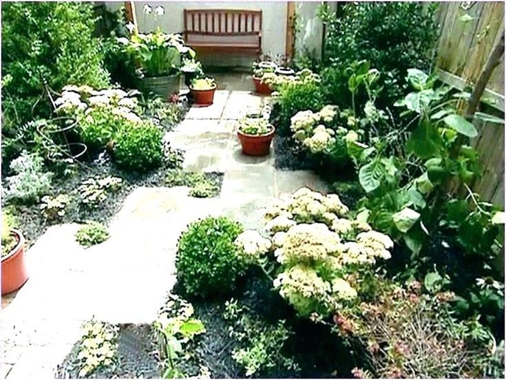 Small Backyard Landscaping Ideas No Grass Small Yard Landscaping