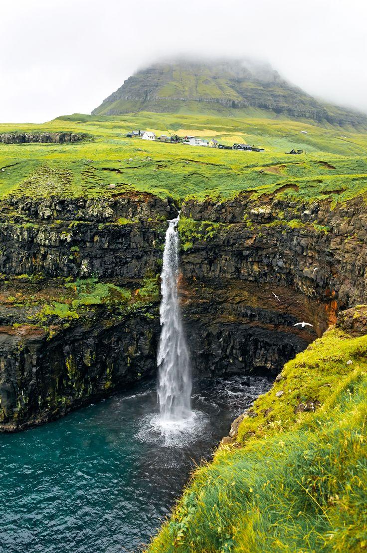 Суровые жители Фарерских островов мумифицируют овечек инебросают китовый промысел— одно слово, викинги.