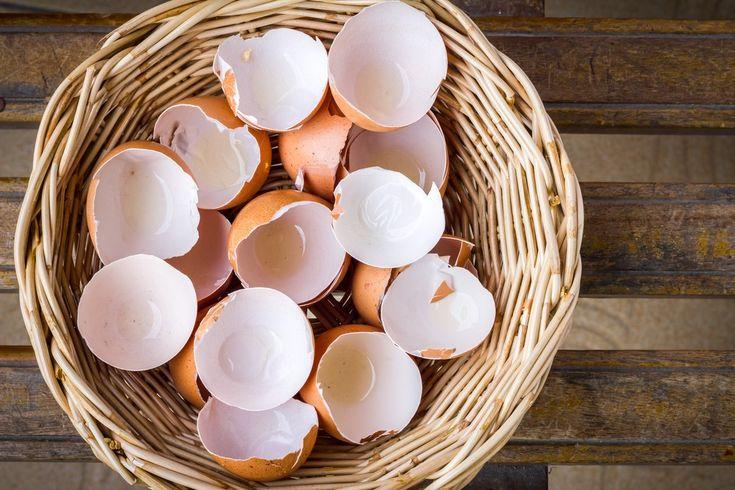 Eierschalen können chemische Mittel oftmals vollständig ersetzen und damit einen Beitrag leisten, die Umwelt nachhaltig zu schonen. Wir haben vier Tipps.