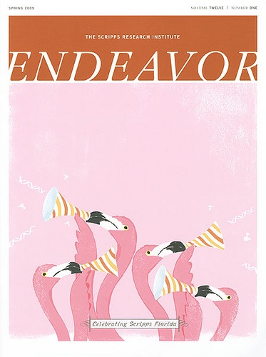 The Scripps Research Institute ENDEAVOR #splendidsummer: Scripps Research Institution, Institution Endeavors, Layout Design, Flamingos Design, Graphics Design, Covers Design, Animal Illustration, Endeavors Covers, Flamingos Graphics