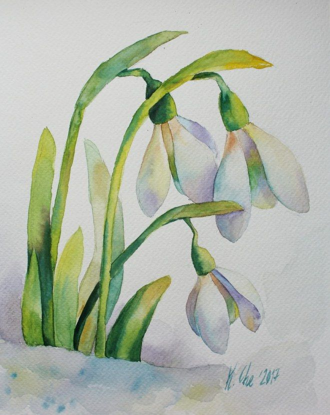 Image Result For Wet In Wet Watercolour Snowdrops Flower Drawing Watercolor Flowers Watercolor Pictures