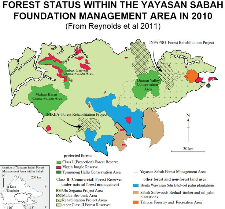 Yayasan Sabah Forest Management Area in 2010.