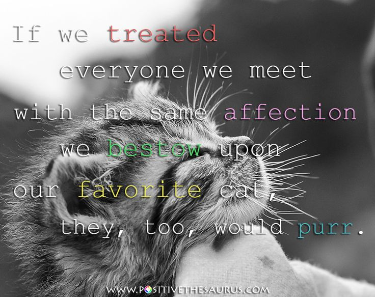 "Love quote by Martin Delany ""If we treated everyone we meet with the same affection we bestow upon our favorite cat,  they, too, would purr. "" #PositiveSaurus #QuoteSaurus #MartinDelany #LoveQuote #PositiveQuote #PositiveWords #Cat #Cute #Purr http://www.positivethesaurus.com/2015/05/synonyms-for-kind-positive-word-list.html"