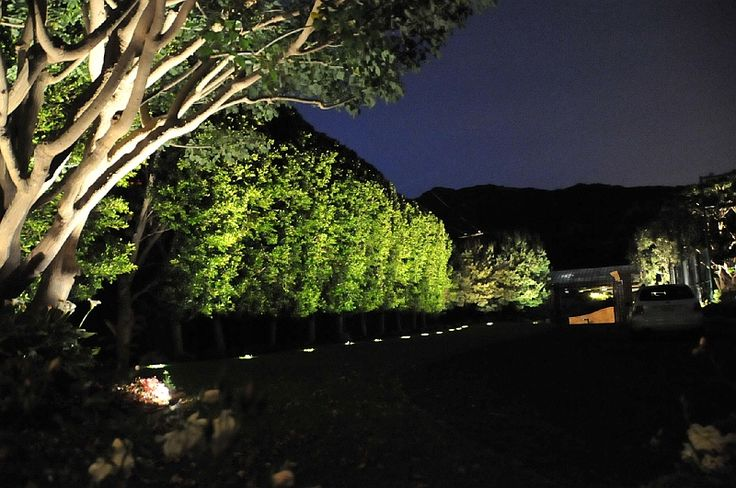 Lighting Landscape Lighting Outdoor Landscape