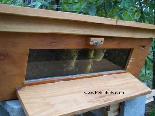Window Top Bar Hive   Free Shipping Window Top Bar Hive   Free Shipping  NetShed.