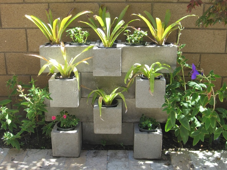 Garden Block Wall Ideas cinder block retaining wall with green grass Bromeliad Cinder Block Garden