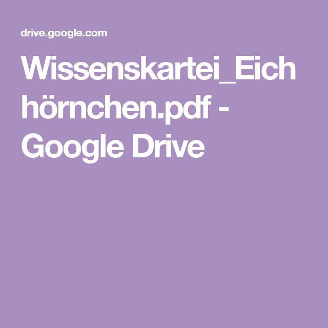 wissenskarteieichhörnchenpdf  google drive  kartei