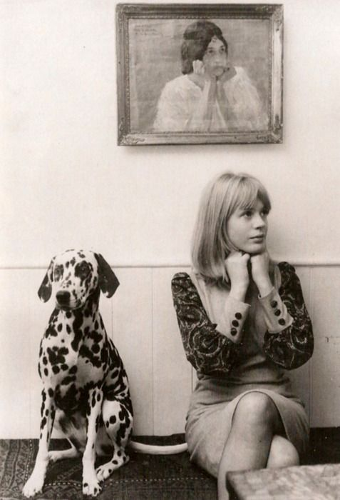 Marianne Faithfull with her pet dalmation, 1964.