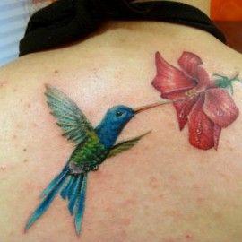tatuagem de beija-flor