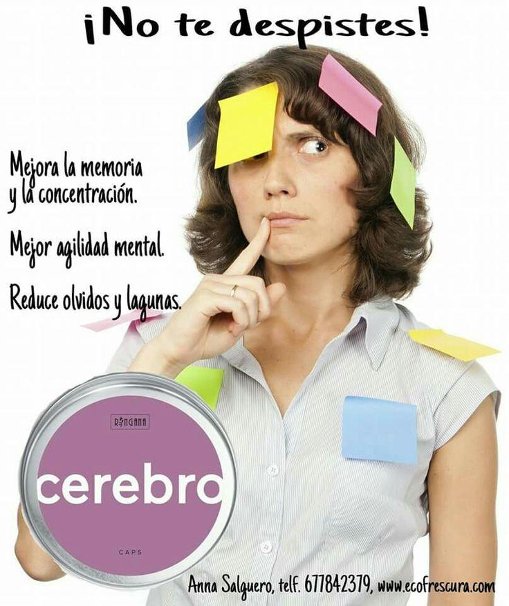 www.ecofrescura.com