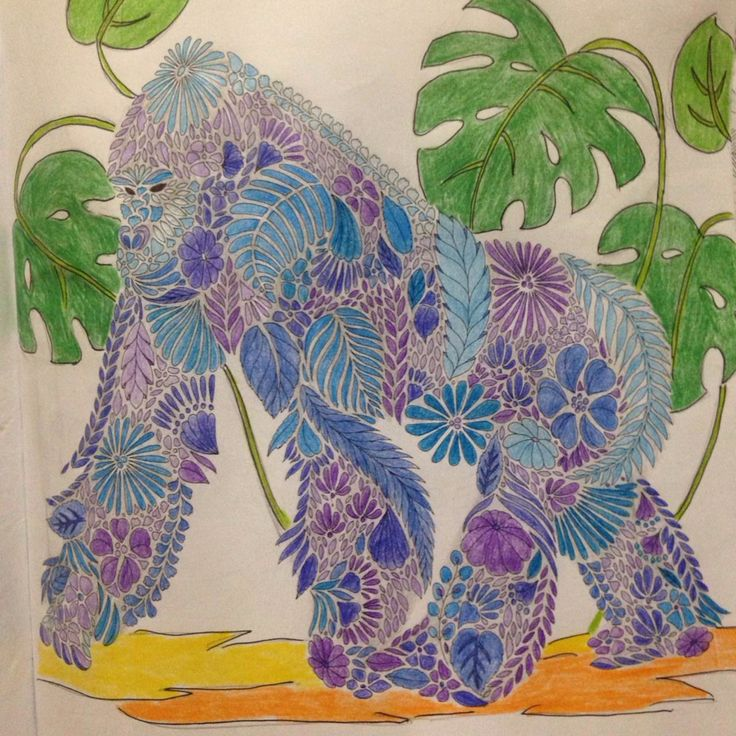 Animal Kingdom Gorilla Coloring BooksAdult ColoringColouringJohanna BasfordAnimal KingdomColored