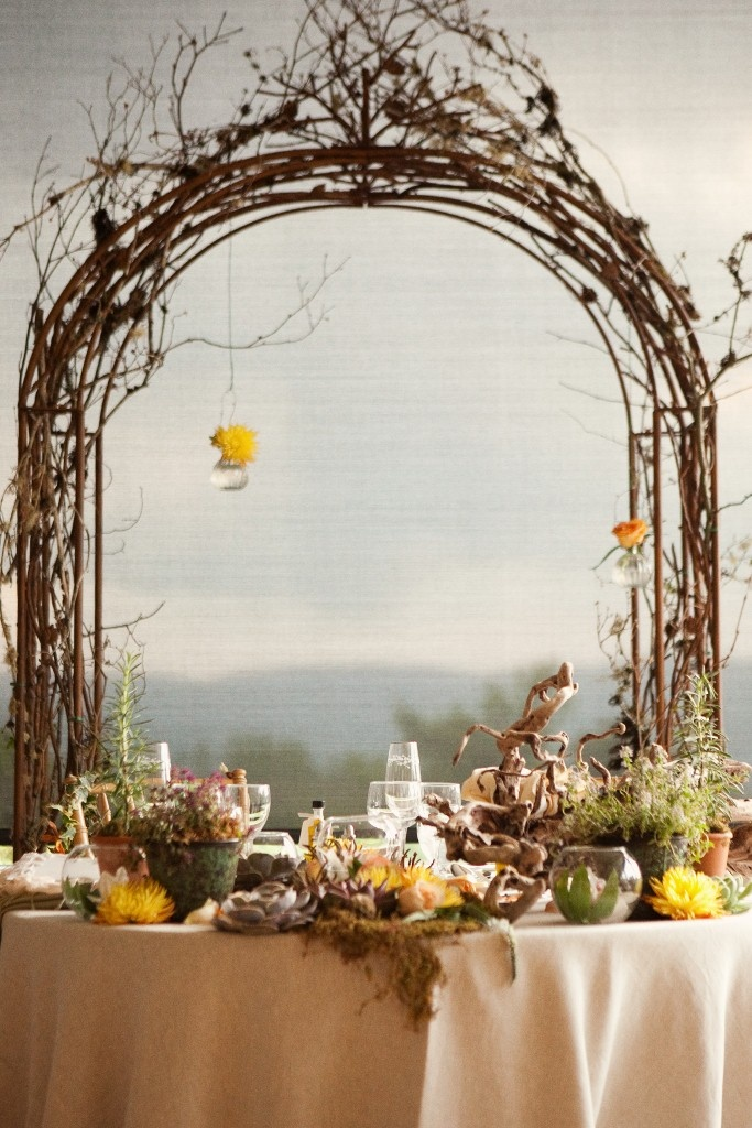 17 Best Images About Grapevine Arches On Pinterest
