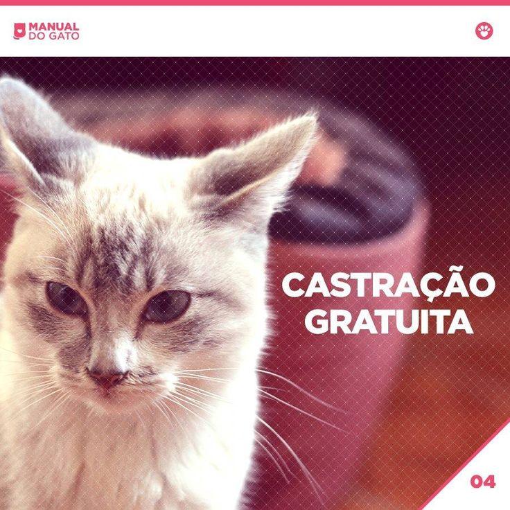 Sabia que em São Paulo é possível castrar o seu bichinho de graça? A castração é um ato de amor e responsabilidade.  Cada munícipe tem direito a cadastrar até 10 animais no Centro de Controle de Zoonoses, sendo que tanto a inscrição quanto a castração são gratuitas.  Seu animalzinho (macho ou fêmea) tem que ter mais de dois meses de idade, mas você não precisa levá-lo para fazer a inscrição. Mais informações aqui: http://on.fb.me/1JtWvvg